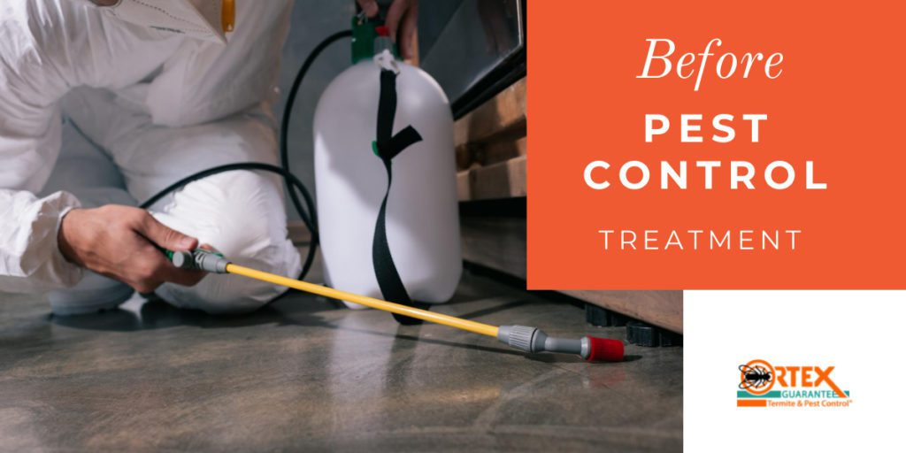 Things you should do before your next pest control treatment