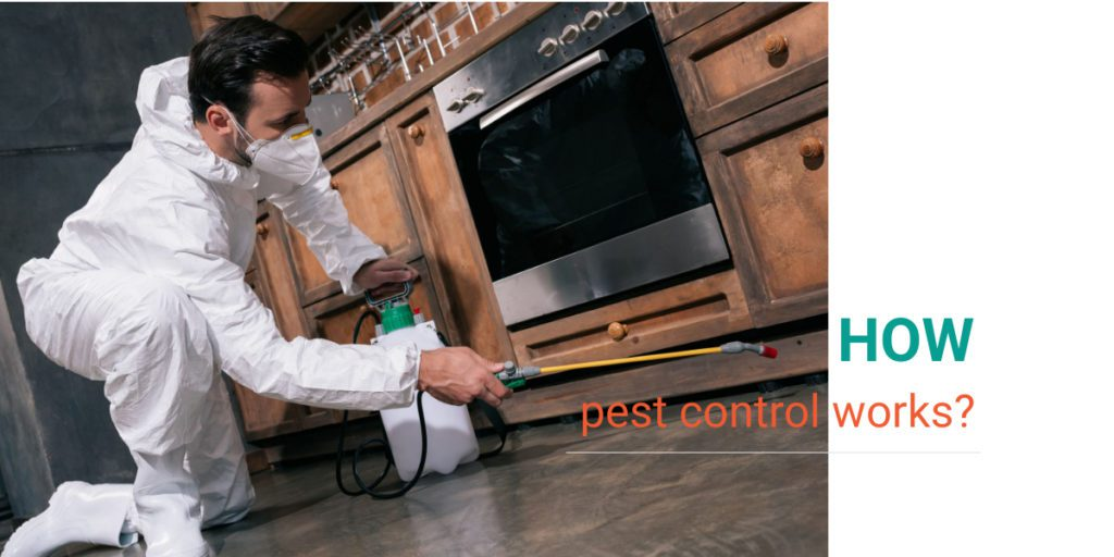 How Pest Control Works